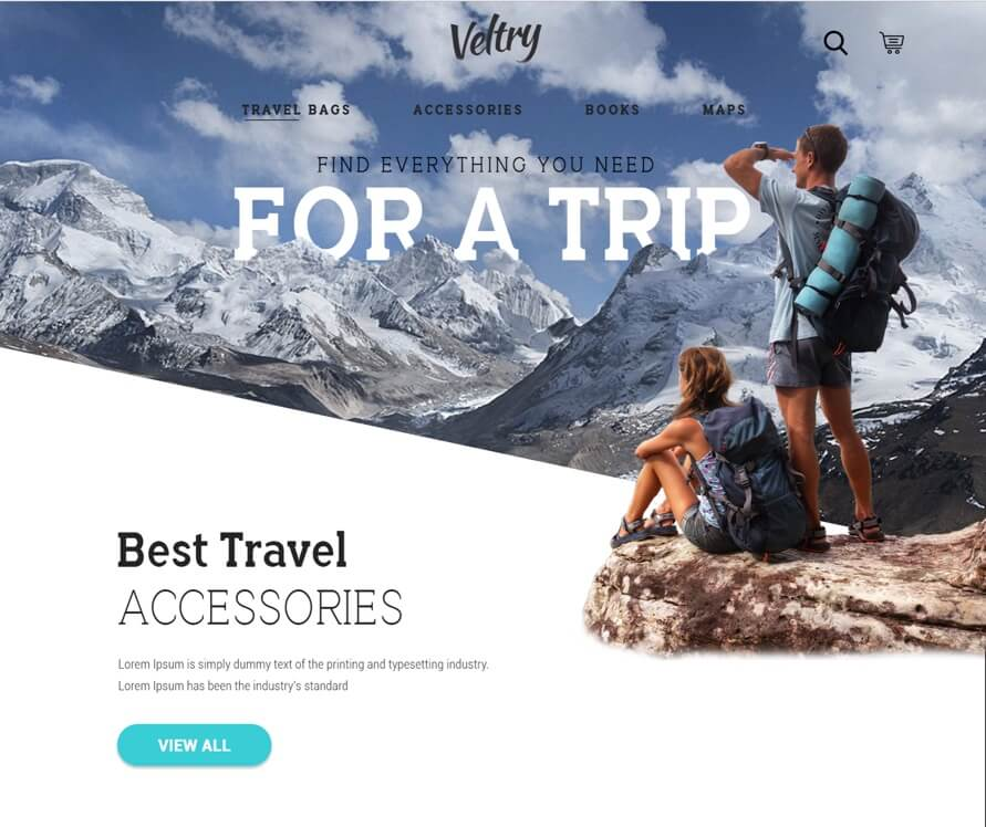 Travel Accessories Website PSD