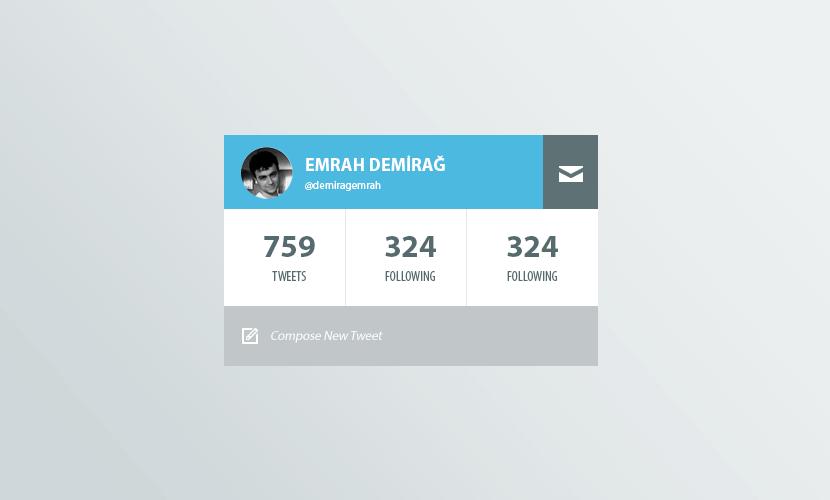 Twitter Profile Widget(PSD)