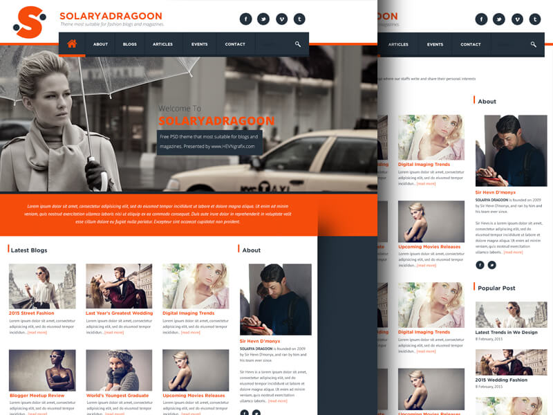 Blog & Magazine Type Website Template