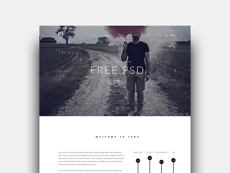 business template free psd