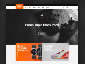 professional_ecommerce_template