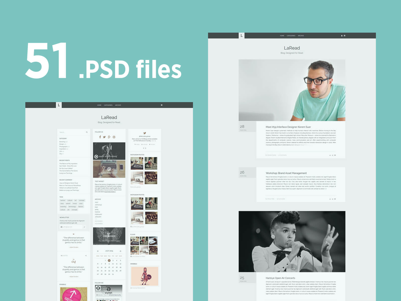 LaRead WordPress Blog Template 51 Pages Free .PSD