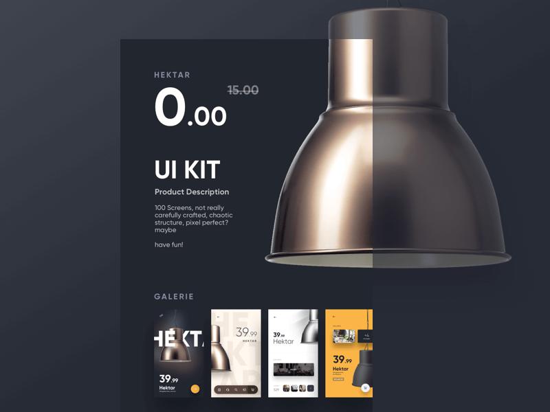 100 screens mobile app UI Kit